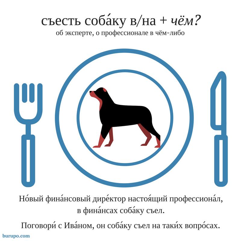 собаку съесть на чём?