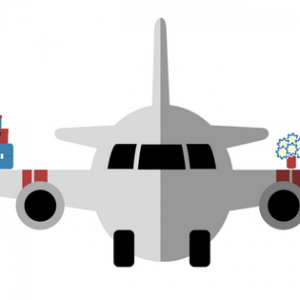 Lesson 'New rules for the luggage transportation by planes' (B1)