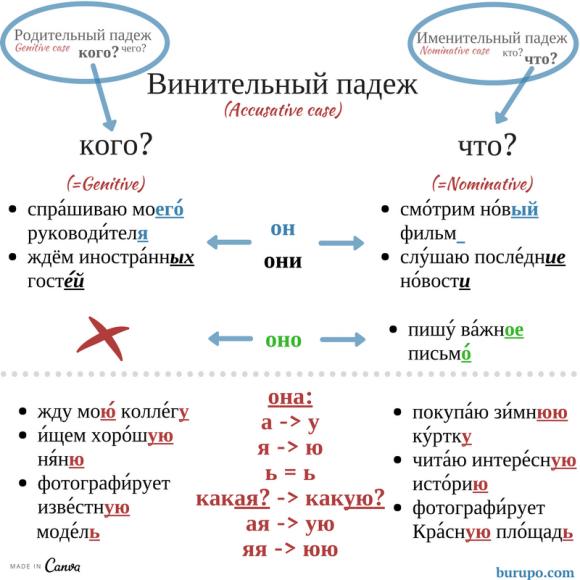 окончания винительного падежа / accusative case in Russian